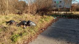 Smetisko na Vinárskej ulici